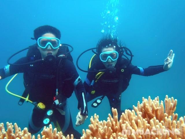 Lặn biển ở Phú Quốc