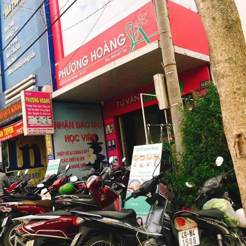 Phượng Hoàng Đà Lạt clinic & spa