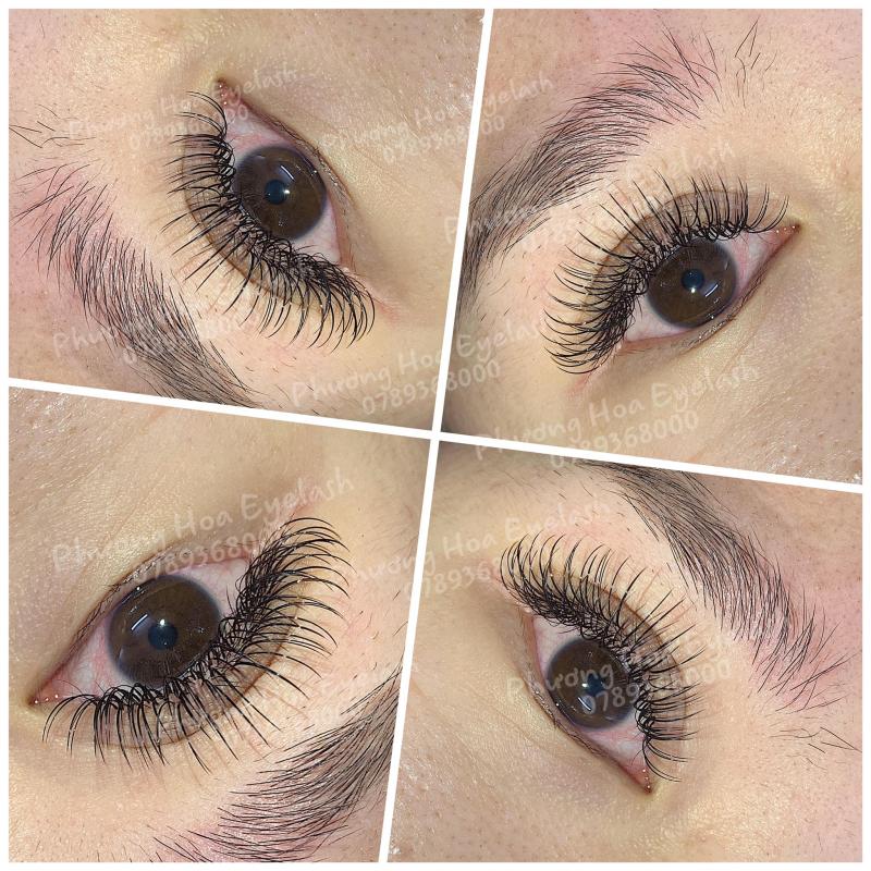 Phương Hoa's Eyelash