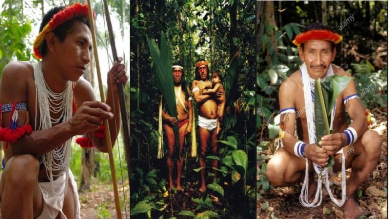 Hình ảnh bộ tộc Piaroa