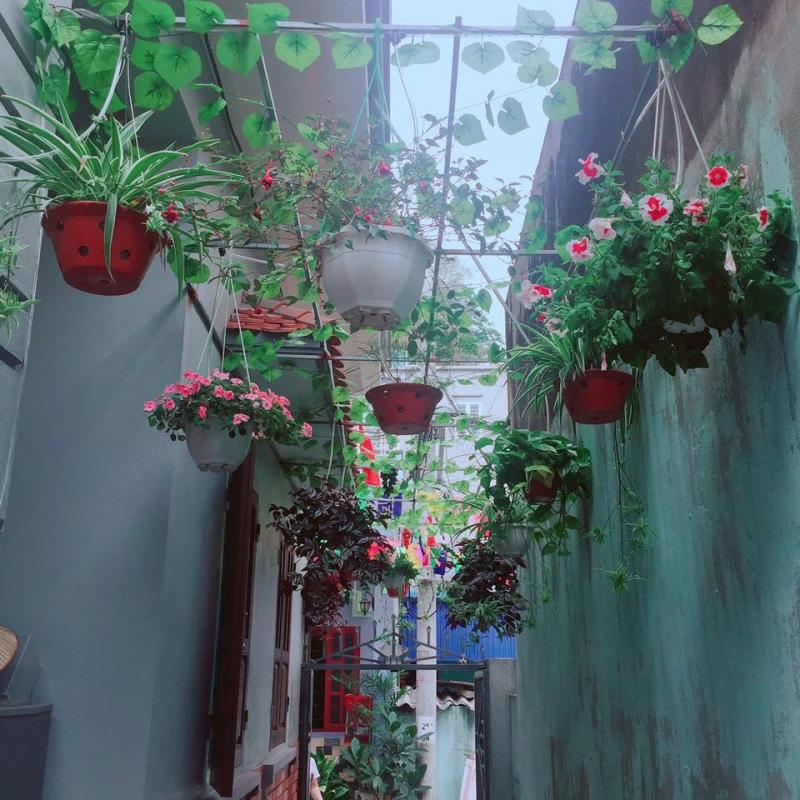 Lối vào trải đầy hoa của Pi's Homestay.
