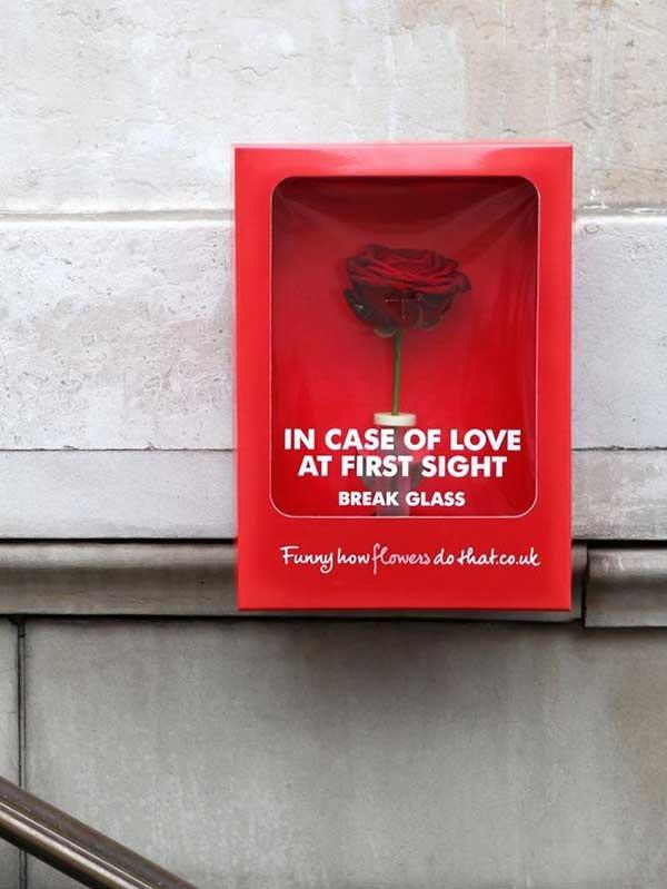 Hãy mở vỏ hộp nếu bạn gặp được tình yêu sét đánh của đời mình nhé!