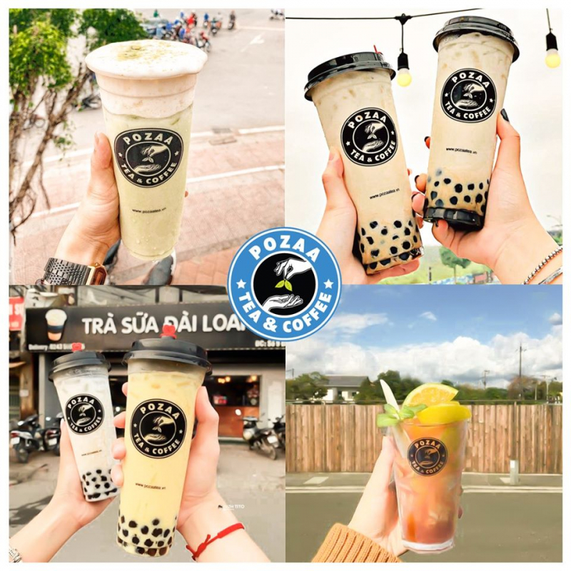 Pozaa Tea Hải Phòng