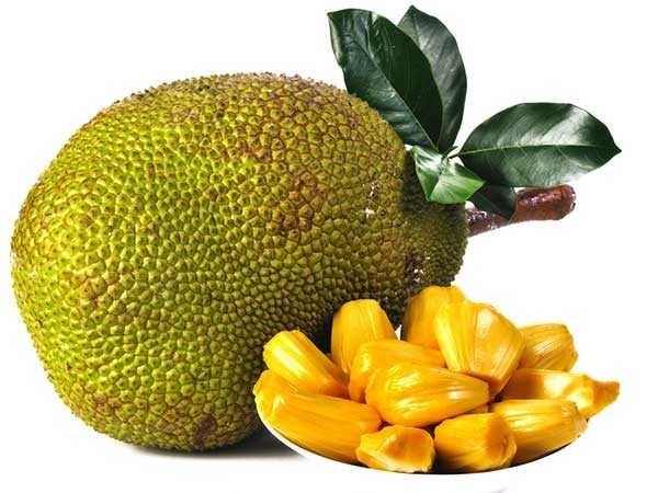 Quả mít là một trong những loại quả cực kỳ thân thuộc với người dân vùng nông thôn quê em.