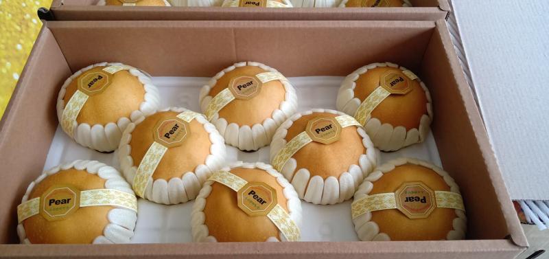 Hoa quả sạch Fuji