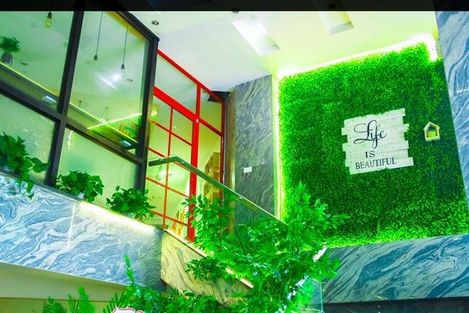 Top 9 quán cà phê có không gian xanh tuyệt đẹp giữa lòng Hà Nội