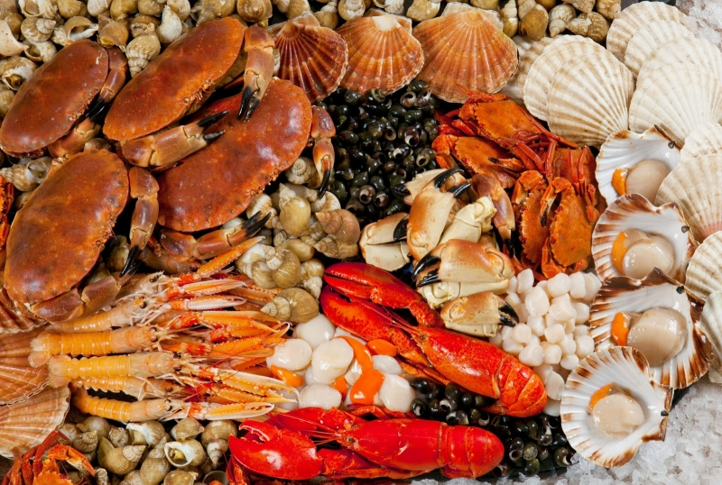Top 8 Quán hải sản tươi sống ngon và rẻ nhất Cần Thơ