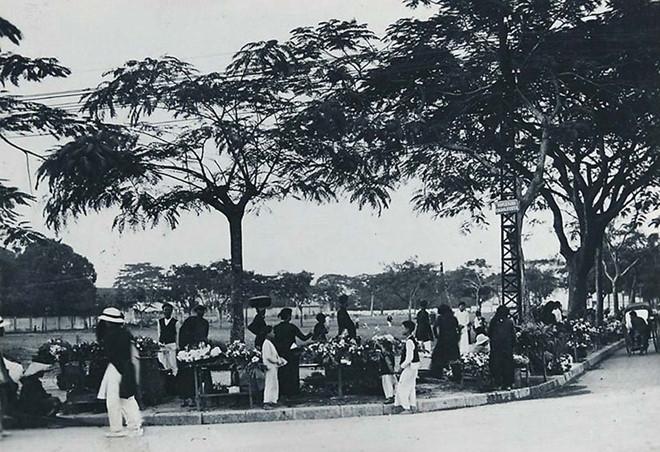 Chợ hoa Hải Phòng trước khi có quán hoa