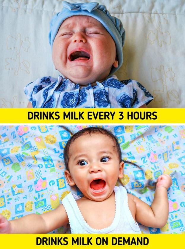 Trẻ sơ sinh nên được cho ăn 3 giờ một lần