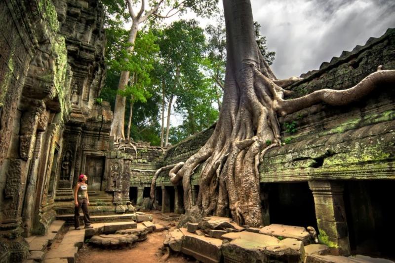 Đền Ta Prohm được đánh giá là ngôi đền đặc biệt nhất trong quần thể