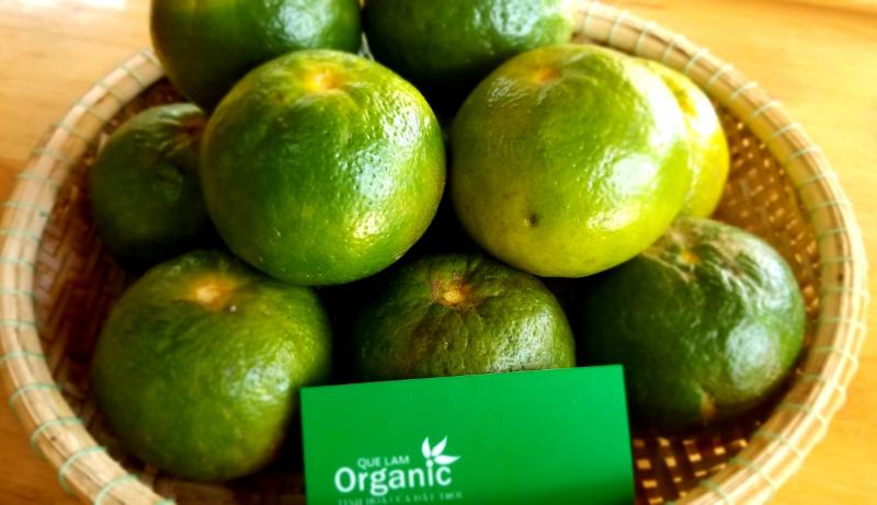 Top 5 Cửa hàng trái cây sạch và an toàn tại Huế