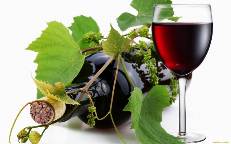 Italia được biết đến là một quốc gia sản xuất rượu vang đứng hàng đầu thế giới