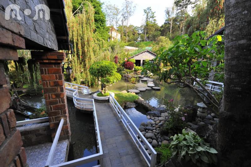 Rainy Café là quán café sân vườn với không gian thoáng đãng, có dòng suối nhỏ róc rách cùng nhiều loại cây và hoa khác nhau.