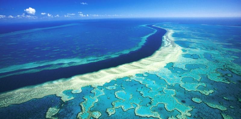 Rạn san hô Great Barrier nằm ở Úc là hệ thống đá ngầm san hô lớn nhất thế giới