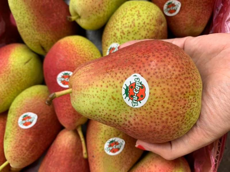 Rau Quả Bình Thuận/ Fruits And Greens Co.,