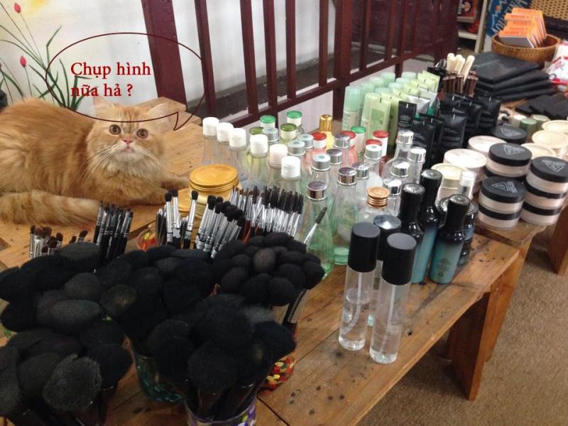 Lớp học trang bị đầy đủ mỹ phẩm và dụng cụ trang điểm cho học viên