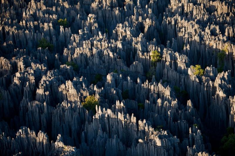 Rừng đá ở Vân Nam, Trung Quốc