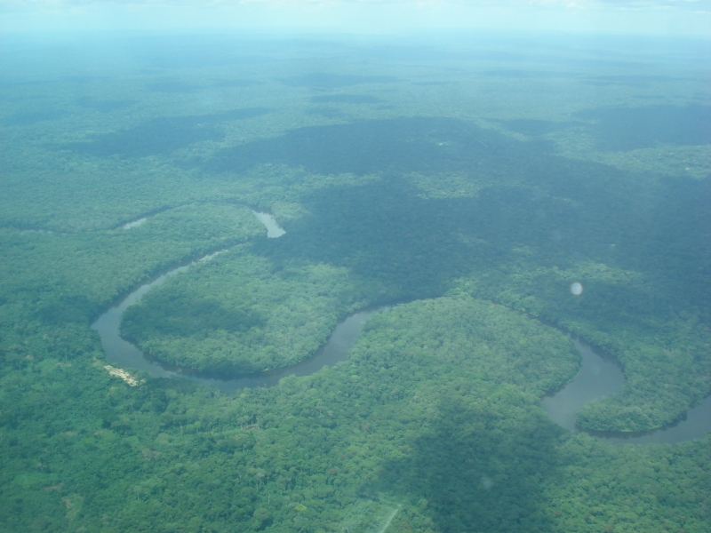 Rừng Congo bao bọc sông Congo uốn lượn