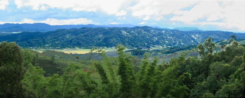 Cảnh tượng hùng vĩ ở rừng Tây Song Bản Nạp
