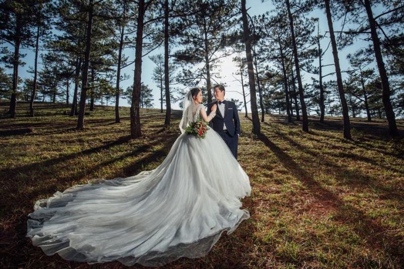 Ảnh cưới tại rừng thông Đà Lạt