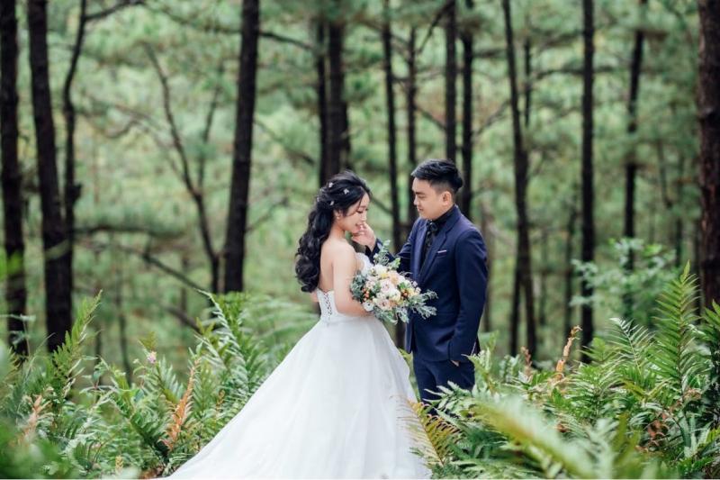 Ảnh cưới tại rừng dương xỉ Đà Lạt