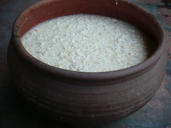 Lu gạo nếp đang được lên men rượu dùng cho mùa lễ Tết