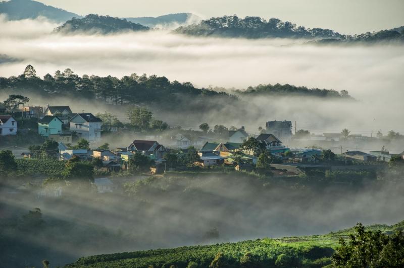 Thành phố sương mù Đà Lạt nổi tiếng với loại rượu vang rất đặc trưng (Nguồn: Sưu tầm)
