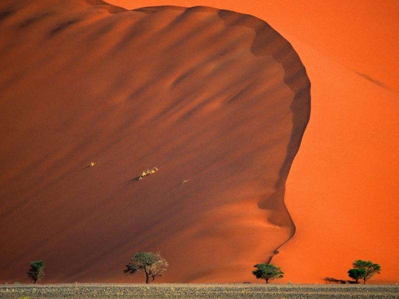 Sa mạc Namib: Namibia