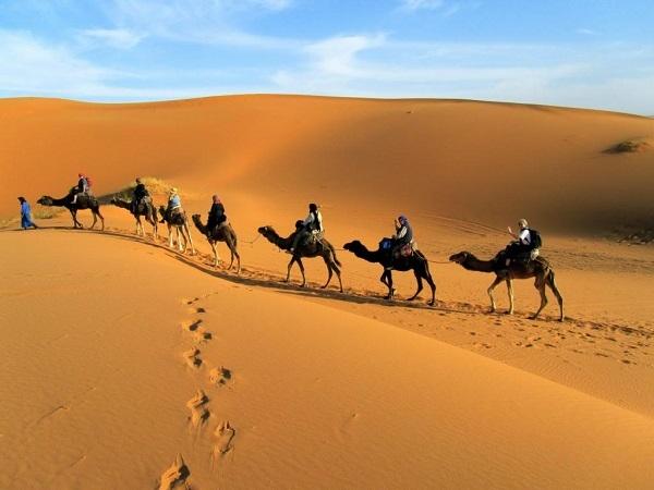 Sa mạc Safari Dubai