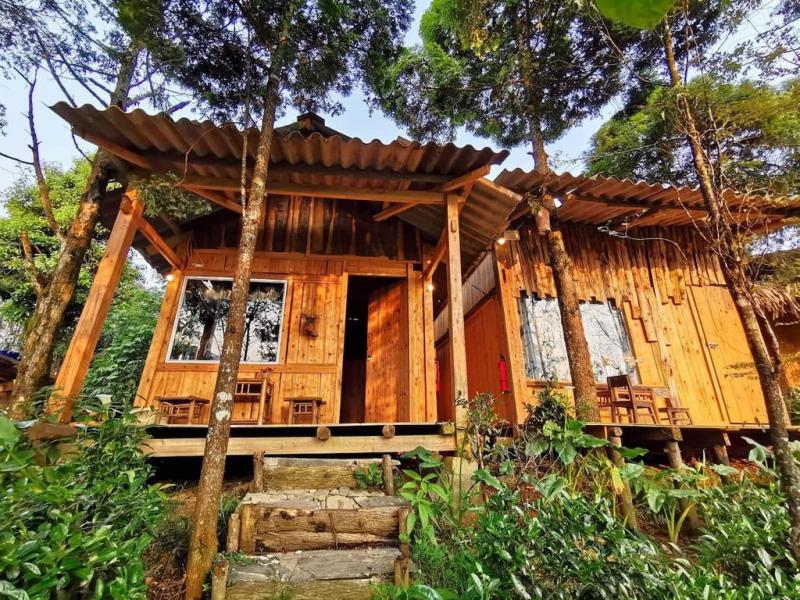 Sa Pa Jungle Homestay
