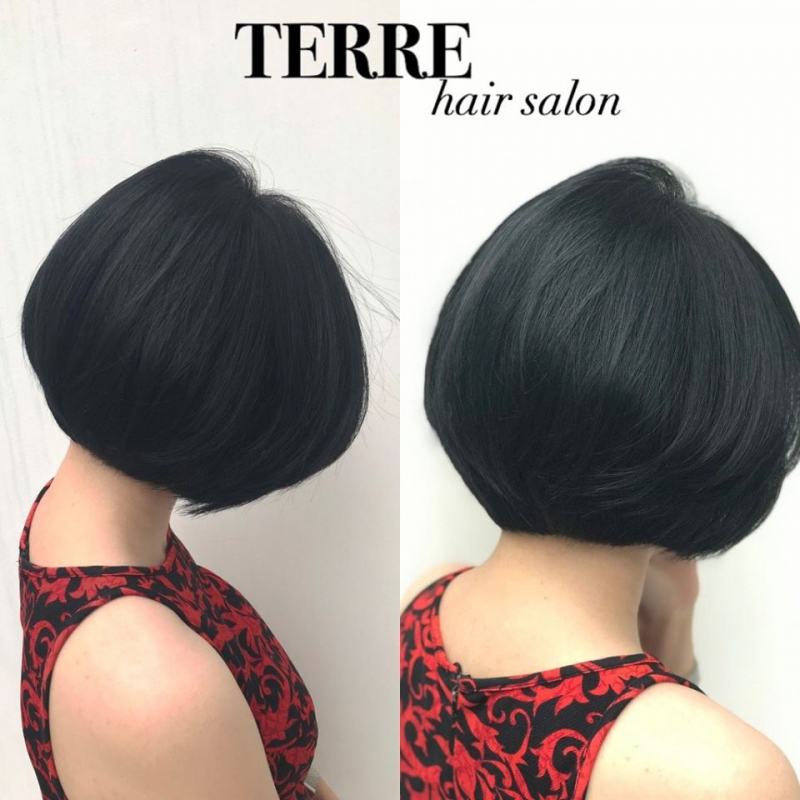Salon Terre