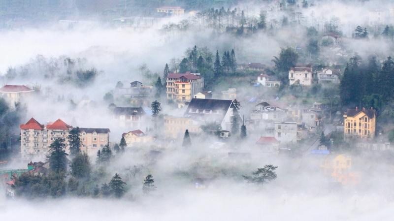 Sapa mù sương