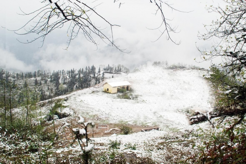 Bạn có thể được ngắm tuyết rơi khi đến Sapa vào mùa đông