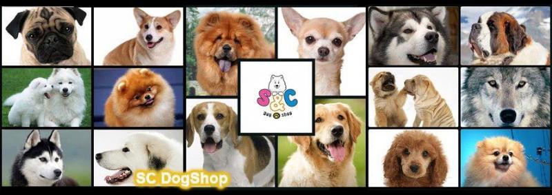 SC Dog Shop