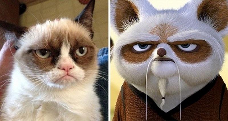 Shifu trong phim Kungfu Panda
