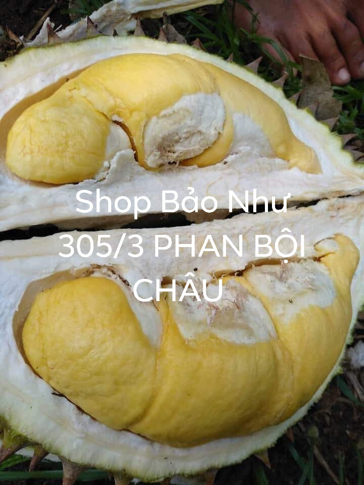 Sầu riêng shop Bảo Như