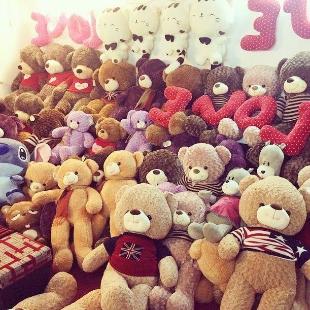 Shop Gấu Teddy