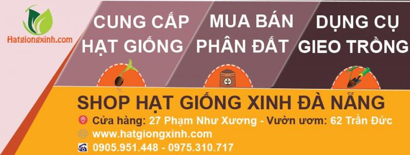 Shop Hạt Giống Xinh Đà Nẵng