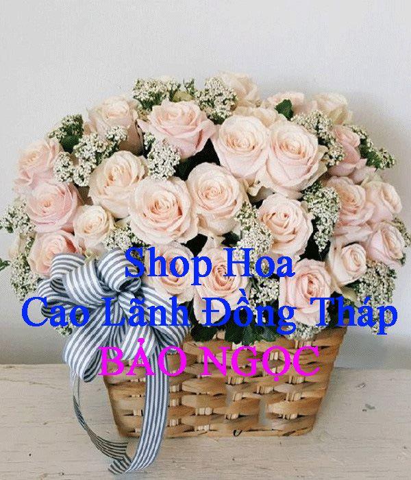 Shop hoa tươi Bảo Ngọc
