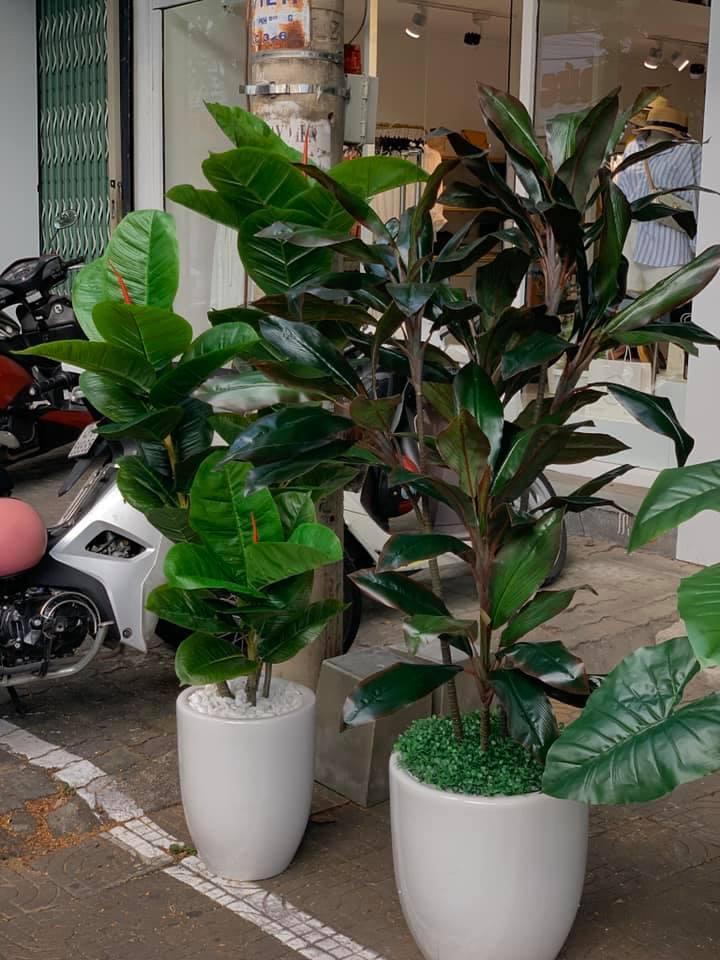 Shop Hoa IDeas Decor