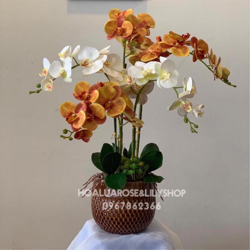 Shop hoa lụa - Rose&Lily