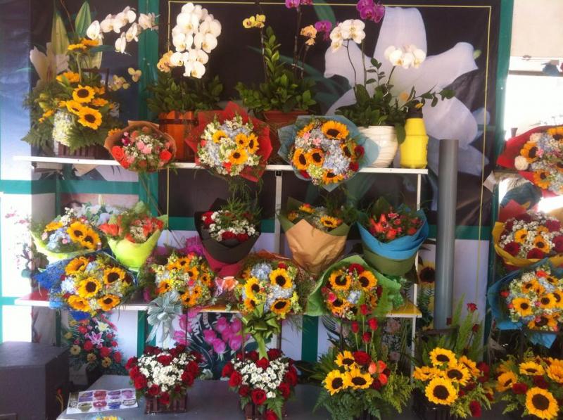 Shop hoa tươi Bách Hợp luôn tự tin khi đưa ra thị trường những bông hoa đẹp nhất, chất lượng nhất với giá thành nhiều ưu đãi nhất