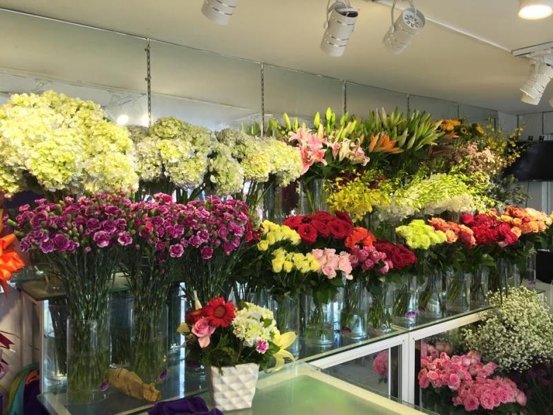 Hoa tươi Phi Hùng biểu tượng của sắc đẹp, tinh tế và trang nhã