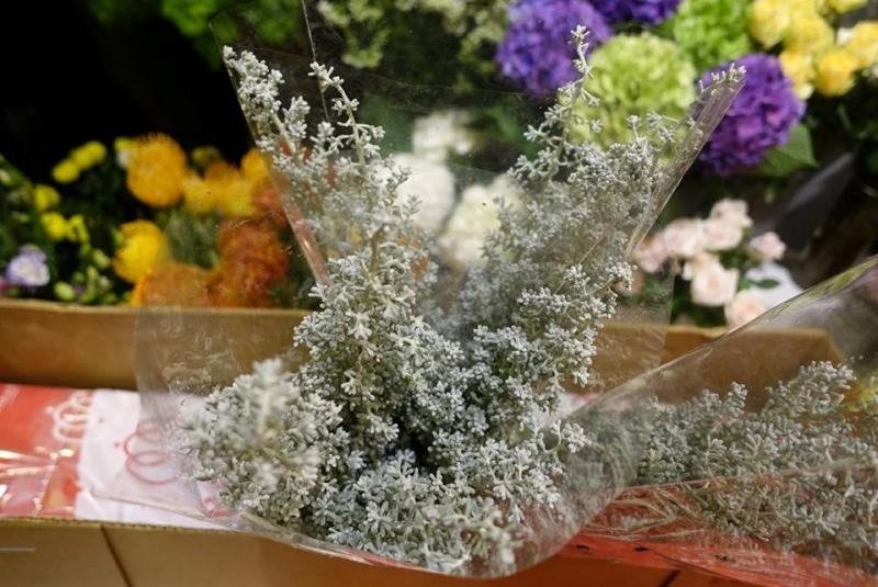Shop hoa Thiên Thu có nhiều hoa lạ và phong phú