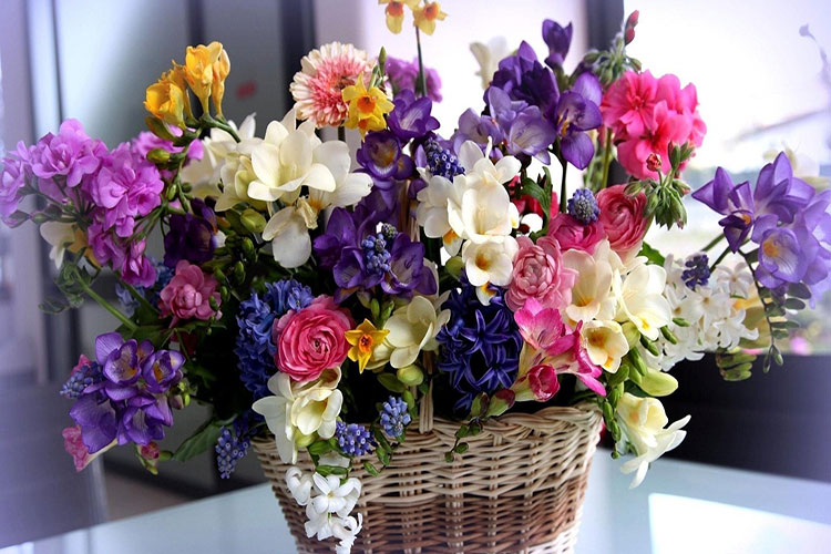 Những lẵng hoa tuyệt đẹp tại shop Minh Thư