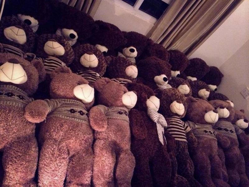 Những chú gấu Teddy vô cùng đáng yêu.