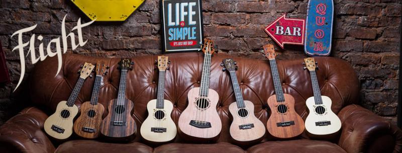Shop ukulele