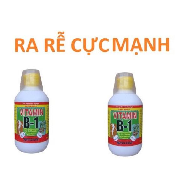 Siêu ra rễ Vitamin B1 cho cây trồng