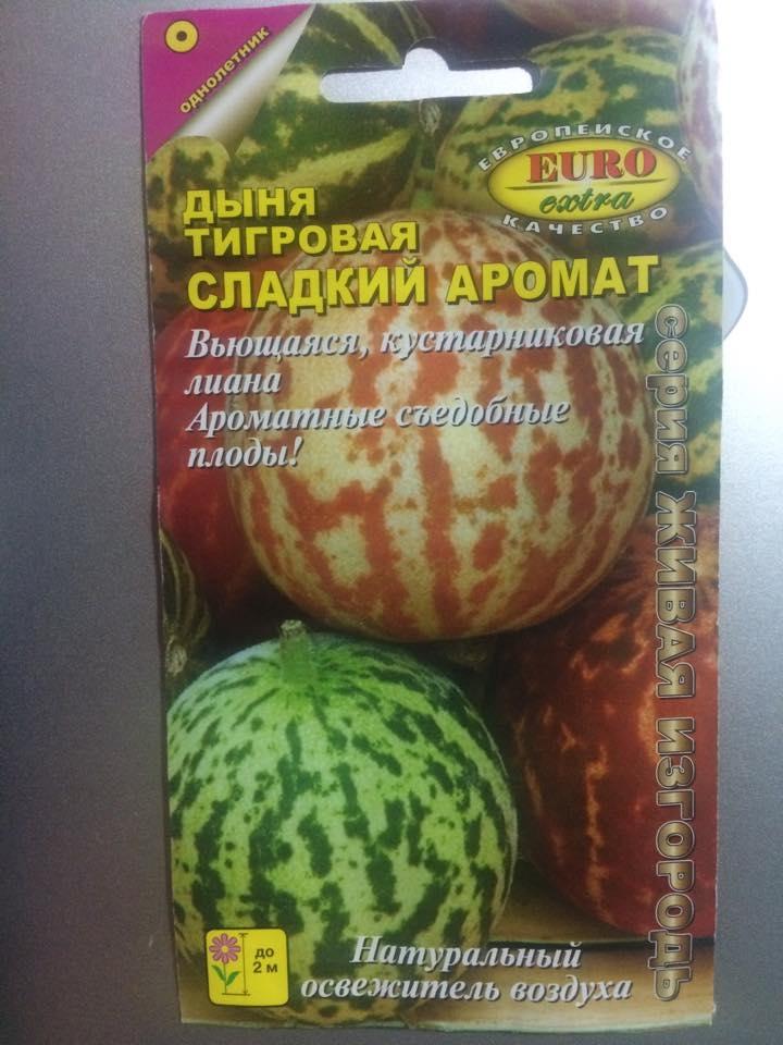 Hạt giống dưa hấu nhập khẩu từ Nga.