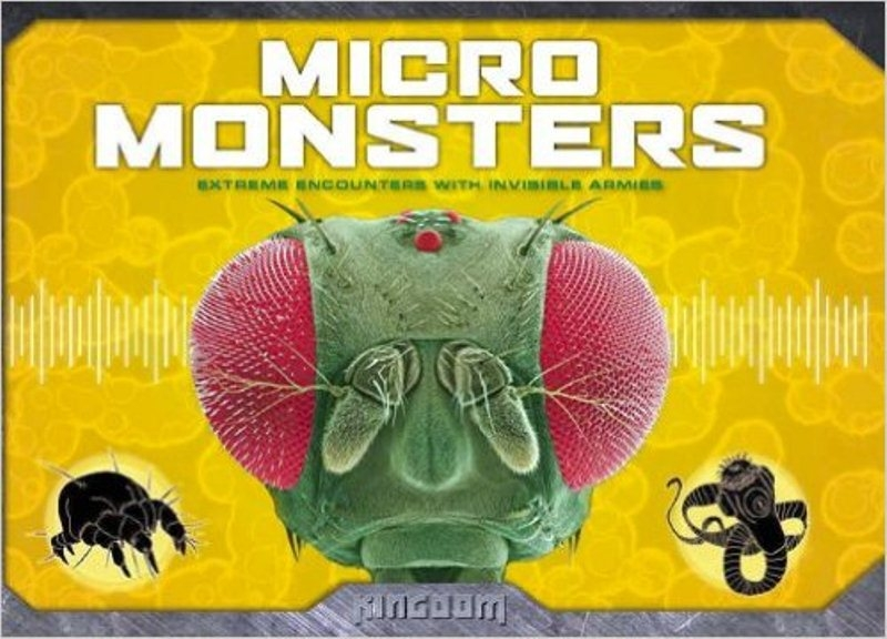 Top 10 sinh vật kinh dị nhất hành tinh dưới kính hiển vi